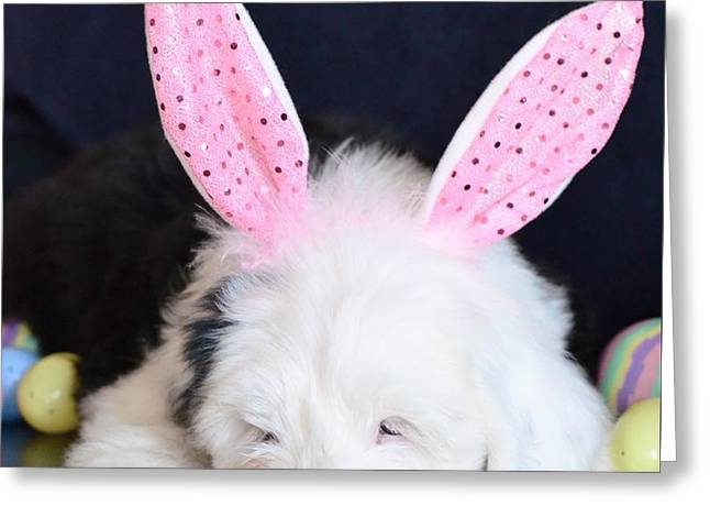 Happy Easter Greeting Card by Kathleen Struckle