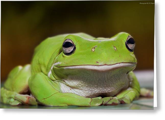 Happy Frog 0003 Greeting Card by Kevin Chippindall
