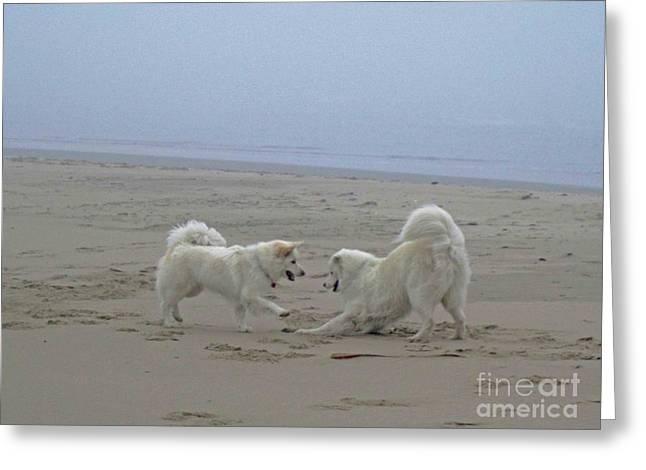 Happy Girls Beach Side Greeting Card by Fiona Kennard