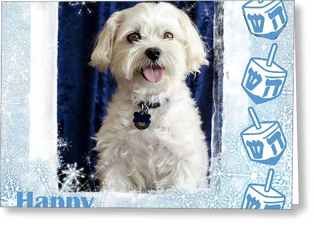 Happy Hanukkah Maltipoo Greeting Card by Harold Bonacquist