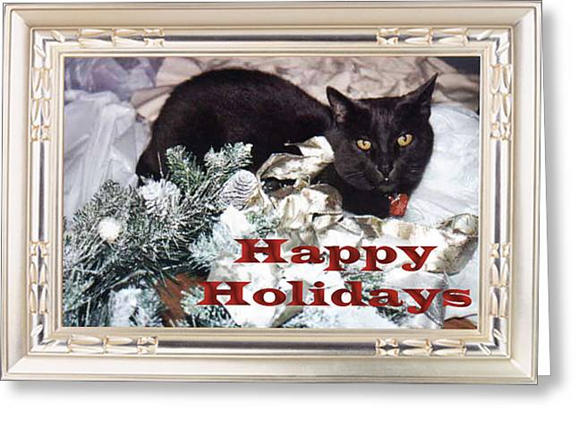 Happy Holidays Greeting Card by Eve Riser Roberts