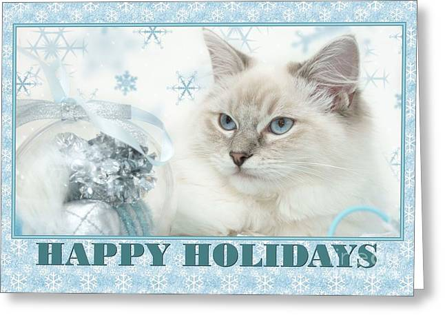 Happy Holidays Precious Kitty Greeting Card