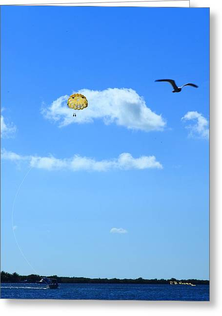 Greeting Card featuring the photograph Happy Parasailing by R B Harper