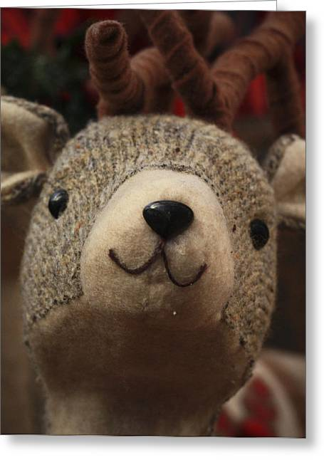 Greeting Card featuring the photograph Happy Reindeer by Patrice Zinck
