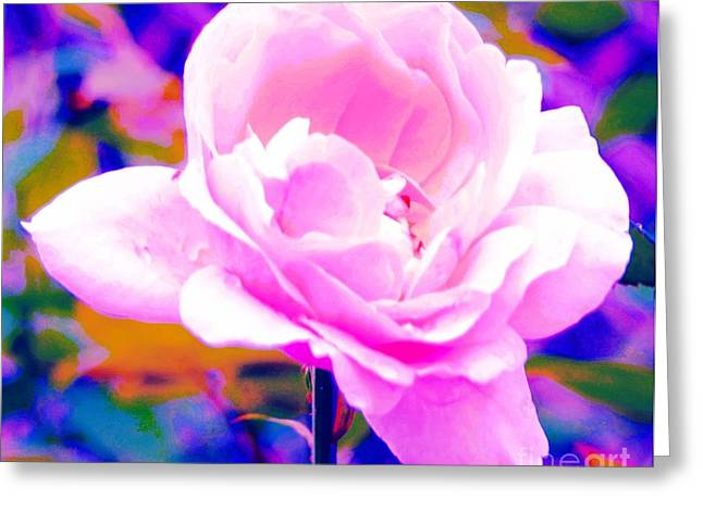Happy Rose Greeting Card by Kathleen Struckle