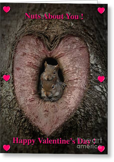 Happy Valentine Squirrels Greeting Card by D Wallace