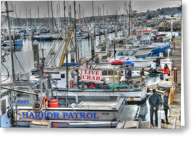 Harbor Crab Daze  Greeting Card by Patricia Dennis