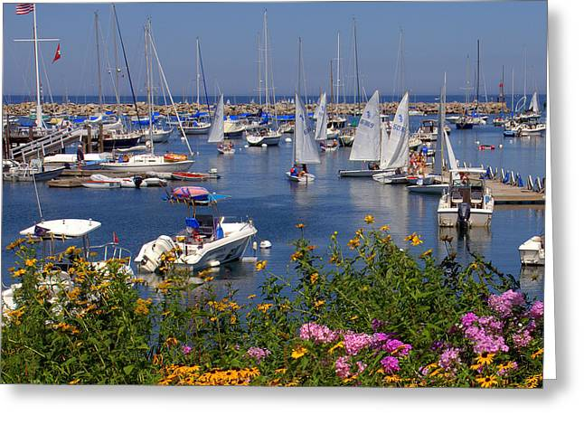 Greeting Card featuring the photograph Harbor In Bloom by Caroline Stella