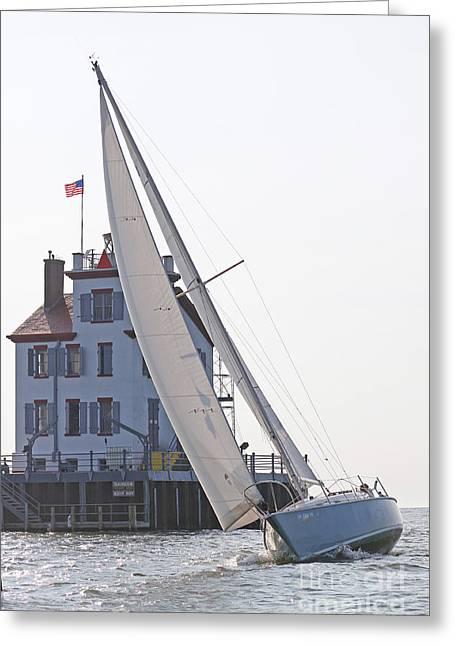 Harbor Sailing Two Greeting Card