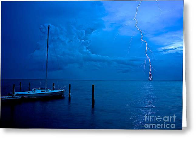 Harbor Storm Greeting Card by Mark Miller