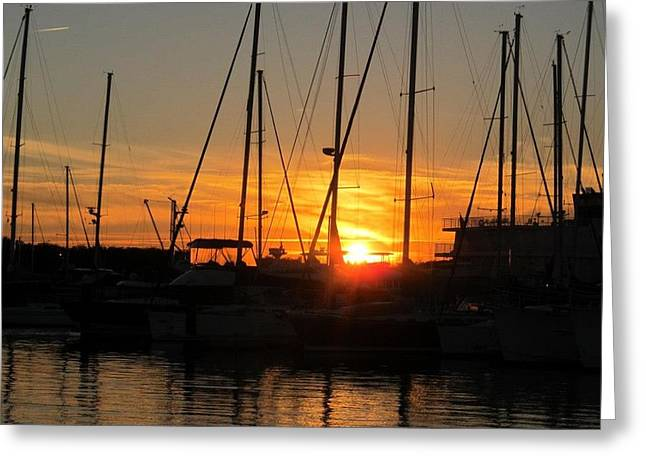 Harbor Sunset In Charleston Sc Greeting Card by Joetta Beauford