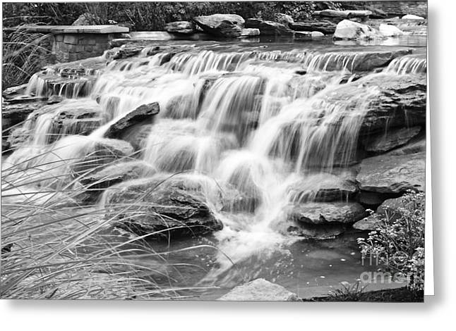 Harbor Waterfall-black And White Greeting Card by Ken Killion