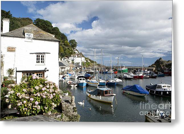 Harbour Cottage Greeting Card by Paul Felix