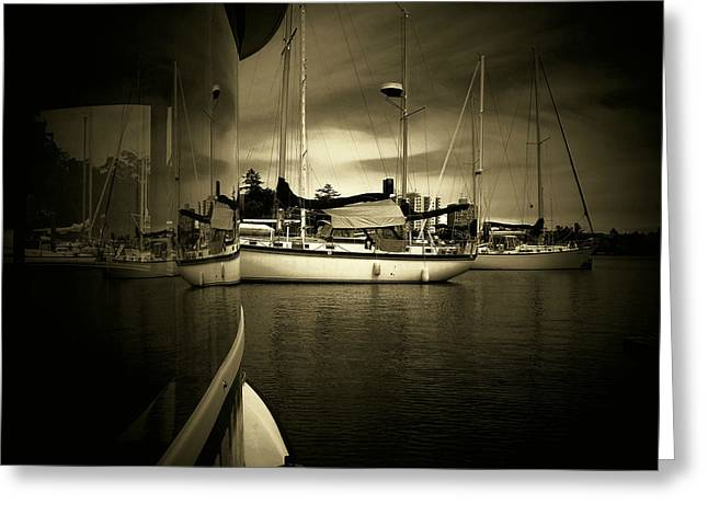Greeting Card featuring the photograph Harbour Life by Micki Findlay