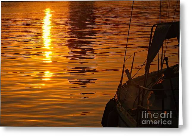 Harbour Sunset Greeting Card by Clare Bevan