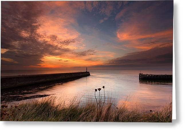 Harbour Sunset Greeting Card by Izzy Standbridge