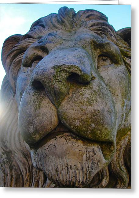 Harlaxton Lions Greeting Card