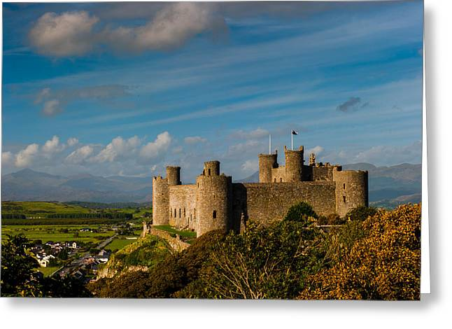 Harlech Castle Greeting Card by David Ross