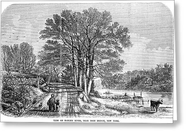 Harlem High Bridge, 1854 Greeting Card by Granger
