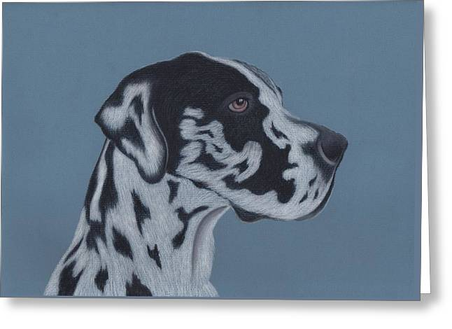 Harlequin Great Dane Greeting Card by Sesh Artwork