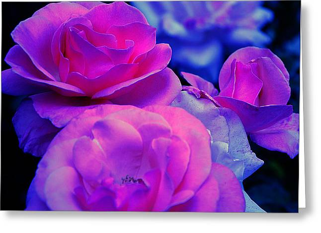 Greeting Card featuring the photograph Harmony In Color by Clayton Bruster