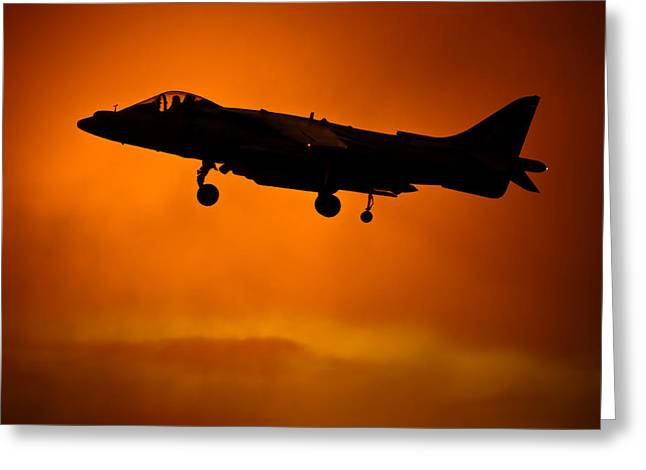 Harrier Greeting Card by Joshua Berman