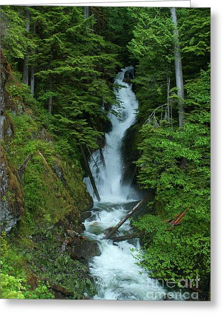 Greeting Card featuring the photograph Harrison Lake Road Falls by Rod Wiens