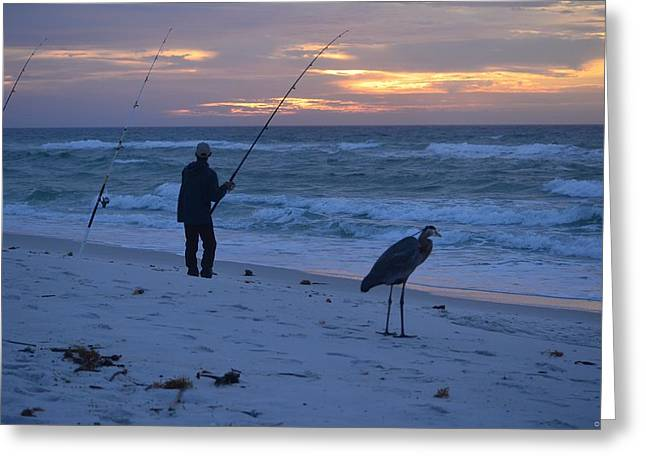 Greeting Card featuring the photograph Harry The Heron Fishing With Fisherman On Navarre Beach At Sunrise by Jeff at JSJ Photography