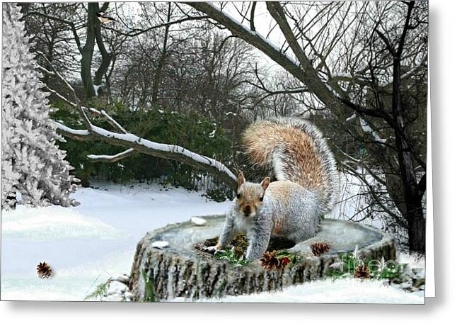 Harry The Squirrel Greeting Card by Morag Bates