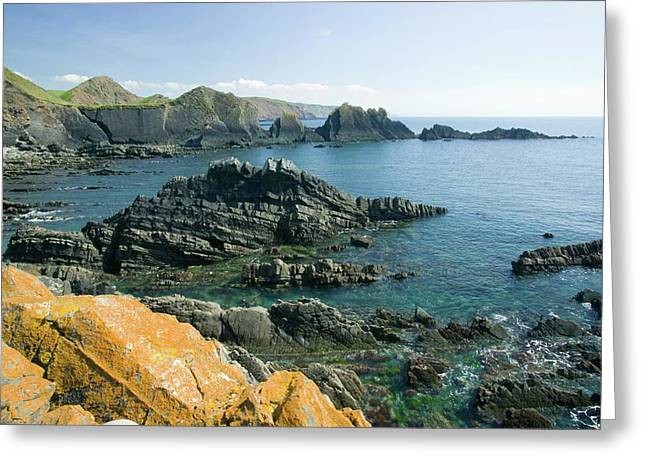 Hartland Quay On The Devon Coast Greeting Card