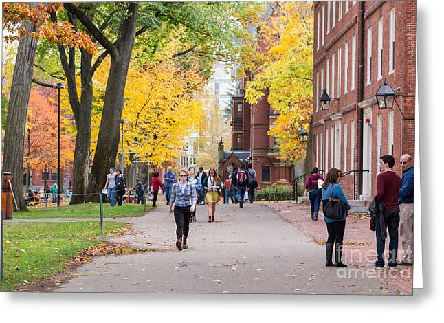 Harvard Campus In Fall Greeting Card by Jannis Werner