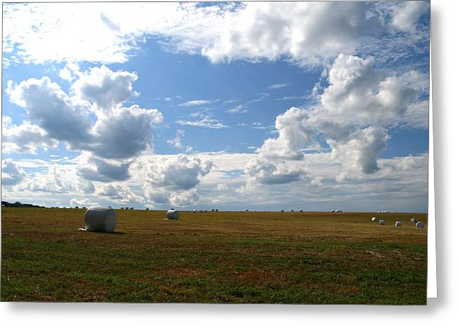 Harvest Blue  Greeting Card by Neal Eslinger