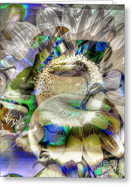 Greeting Card featuring the digital art Harvest by Eleni Mac Synodinos
