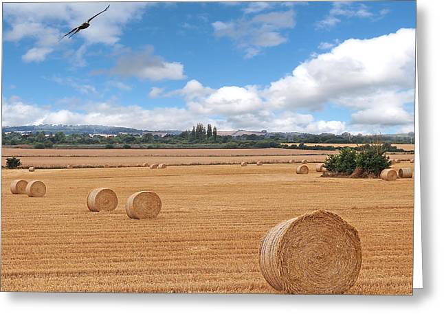 Harvest Fly Past Square Greeting Card by Gill Billington