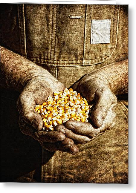 Harvest In His Hands Greeting Card