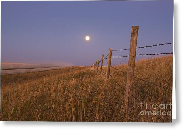Harvest Moon Down The Road, Gleichen Greeting Card
