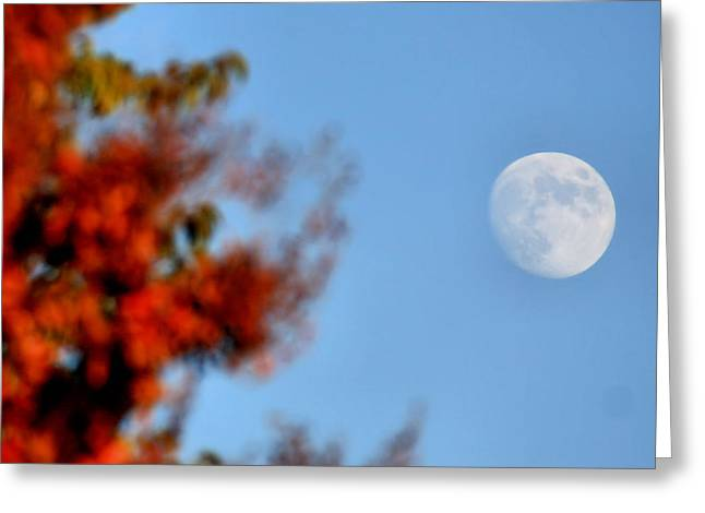 Harvest Moon Greeting Card by Karen Scovill
