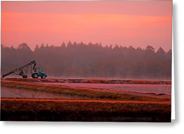 Harvest Morning Greeting Card