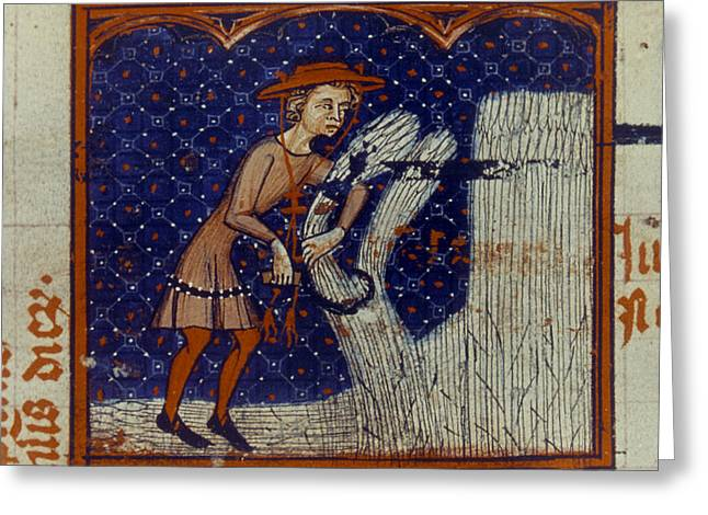 Harvesting, 14th Century Greeting Card