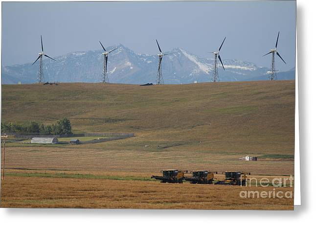 Harvesting Wind And Grain Greeting Card