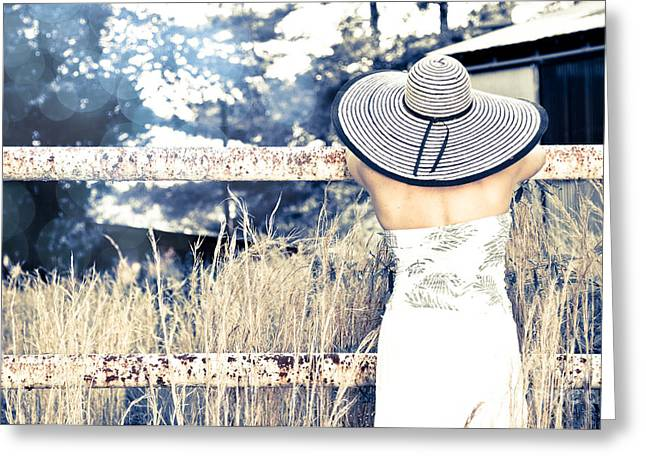 Hat And Fence Greeting Card by Jt PhotoDesign