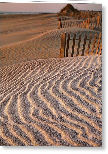 Hatteras Dunes Greeting Card by Steven Ainsworth