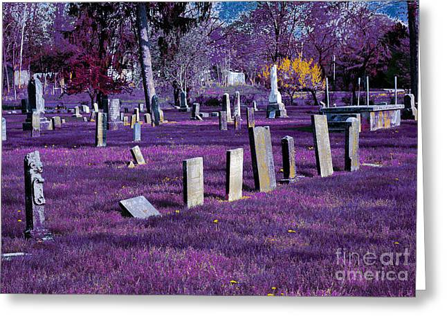 Haunted Cemetery Greeting Card by Alys Caviness-Gober