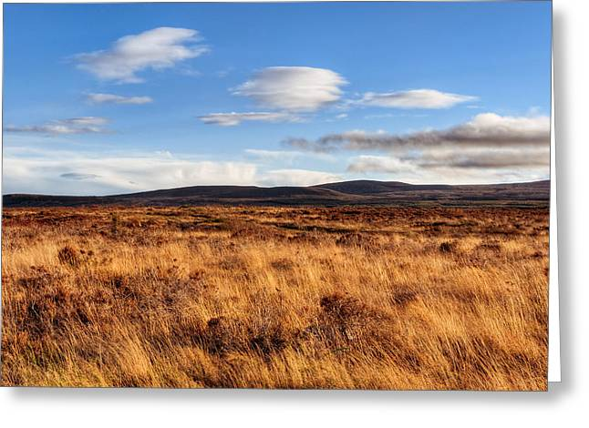 Haunting Beauty Of Culloden Moor Greeting Card