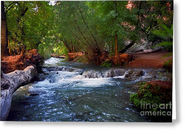 Havasu Creek Greeting Card
