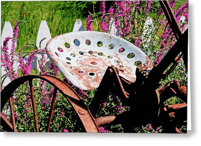 Have A Seat Greeting Card by Heather Allen