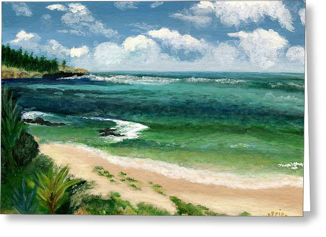 Hawaii Beach Greeting Card