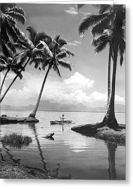 Hawaii Tropical Scene Greeting Card by Underwood Archives