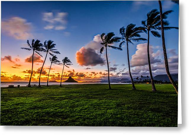 Chainaman Hat Hawaii Greeting Card