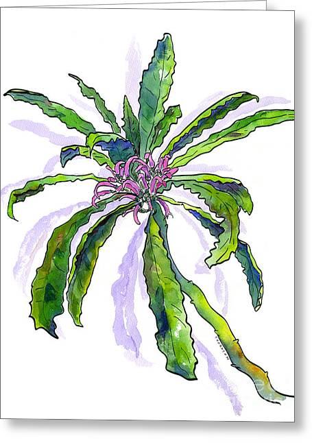 Hawaiian Haha Plant Cyanea Stictophylla Greeting Card by Diane Thornton